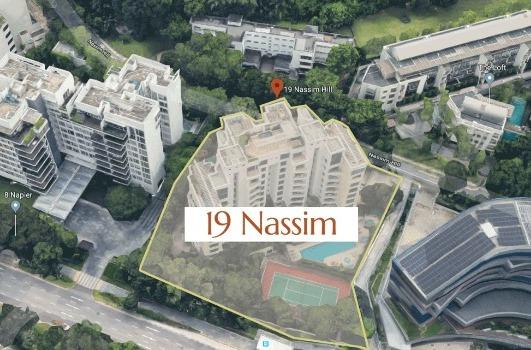 19 Nassim Feature Image