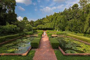 Singapore Botanics Gardens
